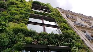 Green Building – The Future